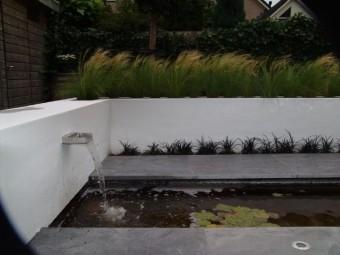 Creatuin de kunst van het cre ren met groen - Moderne tuin foto ...